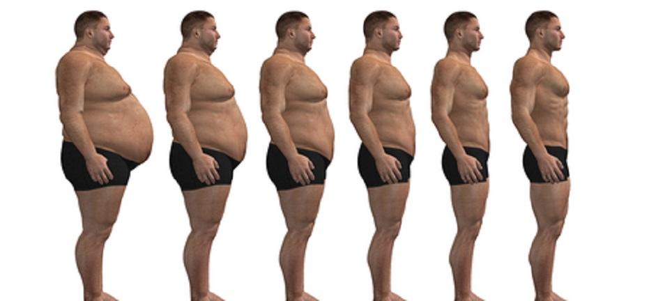 La búsqueda del peso ideal. IMC